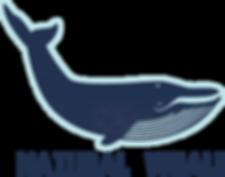 Natural Whale, artisan soap,natural handmade soap , skincare , body wash , eco-friendly , natural soap hong kong , bar soap hong kong , green beauty hong kong, natural skincare , soap hong kong , handmade soap hong kong,dolphin vibes , australia