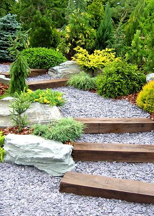 Designer garden with fresh plants and st