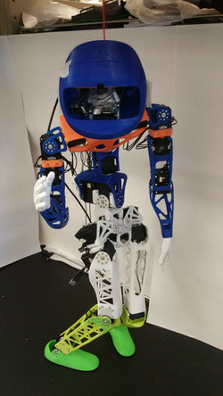 Human-Robot Interactions