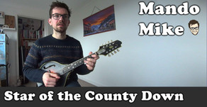 Star of the County Down (Beginner & Intermediate)
