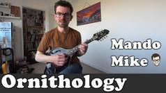Ornithology - The Chords (Advanced)