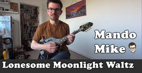 Lonesome Moonlight Waltz - The Chords (Beginner & Intermediate)