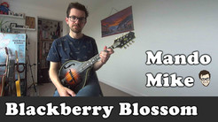 Blackberry Blossom (Beginner)
