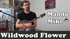Wildwood Flower - Melody & Chords - Beginner & Intermediate
