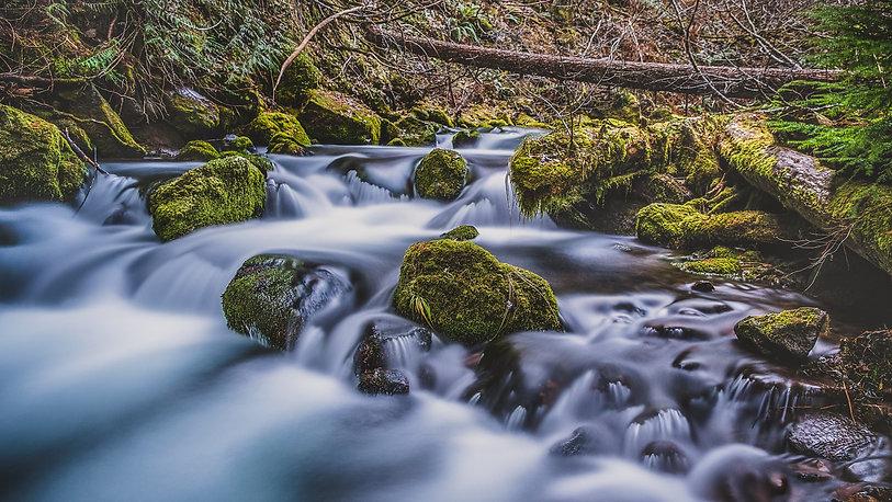 River_Hood.jpg