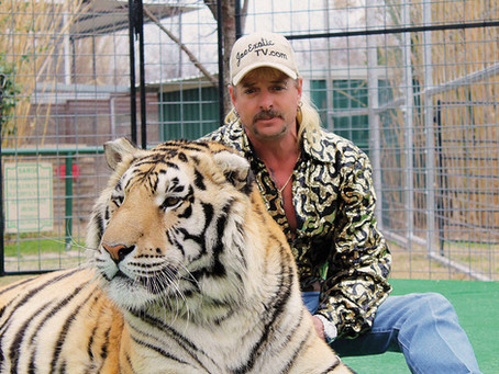 Joe Exotic Deposition: What Not to Do