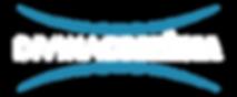 logo divina azul e branco-01.png