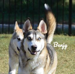 Benjy
