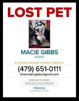 Macie - Lost