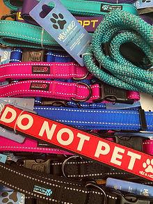 Max & Neo dog leash