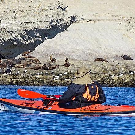 kayak-tra.jpg
