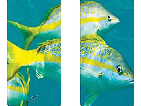 Yellowtail UPF50 Buff