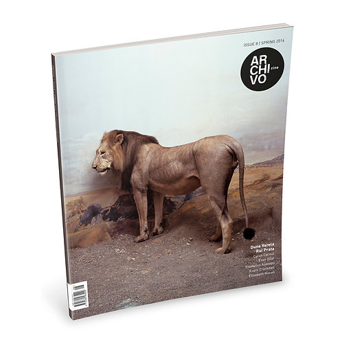 Issue 08 - The constructed image
