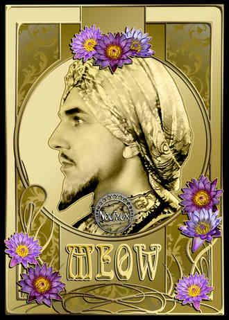 Meow - Prince Hassan