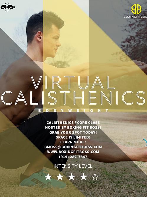 Calisthenics Core Class