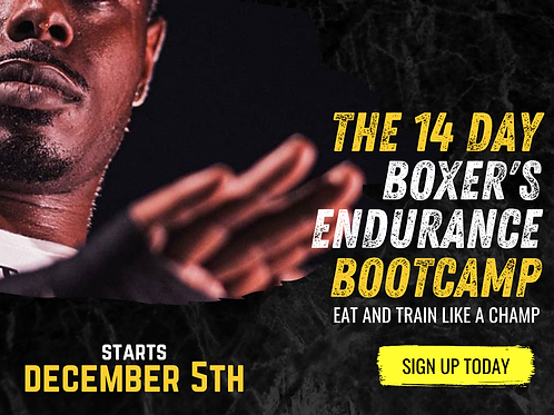 14 Day Boxer's Endurance Bootcamp