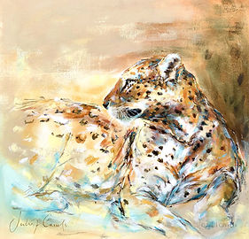 Julia Cassels - Wildlife Artist - 'Leopard', Acrylic on linen board,  61 x 61cm - Framed    £3,750.00 / SOLD