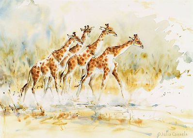 Julia Cassels - Wildlife Artist - 'Giraffe Walk', Watercolour, 47 x 66cm, SOLD