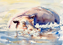 Julia Cassels - Wildlife Artist - 'Hippo Wallow', Watercolour, 30 x 40 cm, SOLD