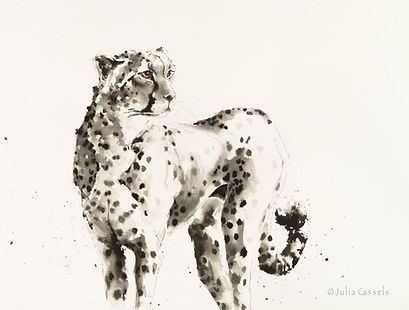 Gallery Ink    Cheetah           Indian
