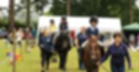 Broadlands Group RDA Medstaed - Riding for the Disabled