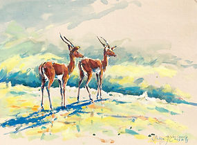 Julia Cassels - Wildlife Artist, 'Impala, Morning Light' - Oil on linen covered board  30 x 40cm - Framed  £950.00