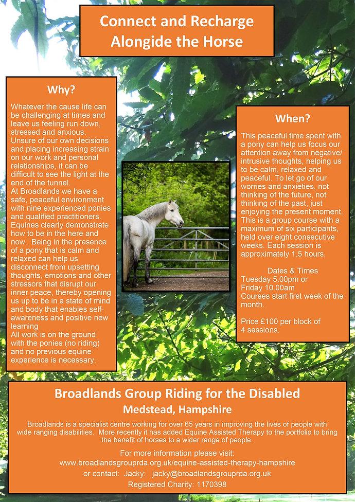 Broadlands RDA, Medstead Therpay Courses Poster