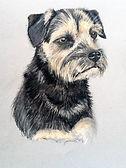 Pet Portraits | Susie de Boinville | Hampshire