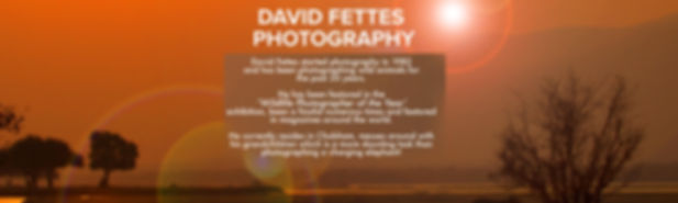 David Fettes Event_edited-1 (1).jpg