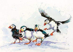 Julia Cassels- Wildlife Artist, 'Puffin Party', Indian Ink and Watercolour, 47 x 67.5cm, SOLD