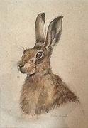 Animal  portrait artist Susie de Boinville
