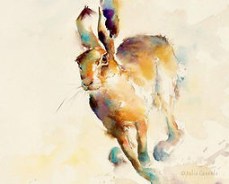 Julia Cassels - Wildlife Artist - 'Hare', Watercolour,  32 x 39cm, SOLD
