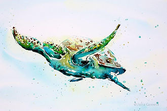 Julia Cassels - Wildlife Artist, 'Green Turtle', Ink and Watercolour, 50 x 70cm, SOLD