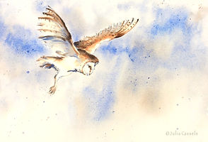 Julia Cassels - Wildlife Artist - 'Flight', Watercolour, 37 x 49cm - Framed £895.00