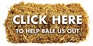 Donate a Bale of Hay, Broadlands RDA, Medstead