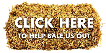Bay Bale Button.png