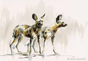 Julia Cassels - Wildlife Artist, 'Wild Dog 1', Watercolour , 50 x 71cm - Unframed  £925.00