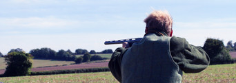 Simulated game shoots Hampshire