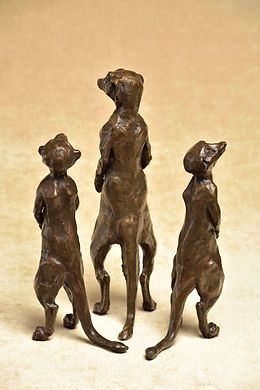 'Mr Meerkat'  Height 37cm x Length 25cm x Width 12cm  Bronze Resin, Edition of 18£695.00  