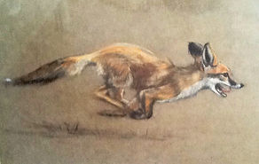 Pet portrait artist, Susie de Boinville, Hampshire