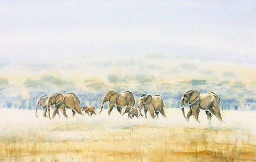 Julia Cassels - Wildlife Artist - 'Elephants across the Dambo', Watercolour, 67 x 108cm, SOLD
