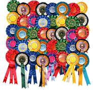 Rosettes png.png