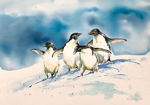 Julia Cassels - Wildlife Artist, 'Who Goes First' - Watercolour,  50 x 70cm,  Framed  £2,200.00