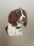 Susie de Boinville pet portrait artist