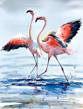 Julia Cassels - Wildlife Artist - 'Open Wings', Watercolour,  63 x 52cm, SOLD