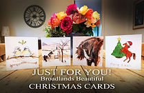 Broadalnds Christmas Cards (1).jpg