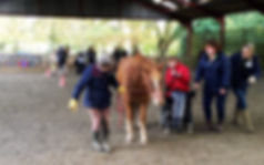 Treloar student at Broadlands RDA, Medst