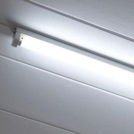 Fluorescent-Tubes-54001892_s.jpg