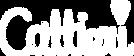 sarah-caltieri-logo.png