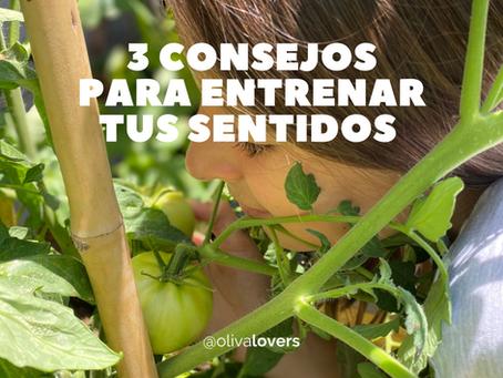 3 consejos para entrenar tus sentidos